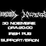 30.11 – Death Metal Supremacy – Winter Edition – in Irish Music Pub