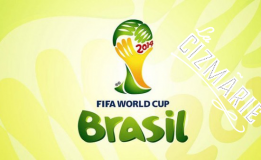 12.06 – 13.07 FIFA World Cup 2014