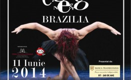 06.06 – 11.06 Festivalul Internaţional de Dans