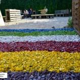 04.08 – 10.08 Şapte evenimente de neratat săptămâna aceasta la Cluj