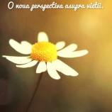 07.10 Seri pozitive: Fii fericit ACUM