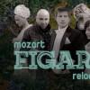 25.06 Nunta lui Figaro