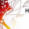 02-04.10 Festivalul Herbstfest