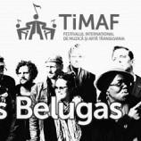 02.10 Concert CLUB DES BELUGAS