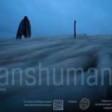 18.11 Transhumanța