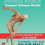 22.11 Our Body: Universul Interior