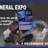 02-04.12 Expozitie: Mineral Expo