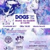 13.01 Dogs' Night Out – Seara cu Oameni si Catei