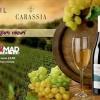 23.06 Degustare de vinuri
