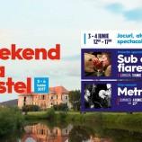 03-04.06 TIFF 2017: Weekend la Castel