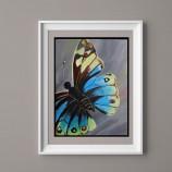 27.02 Atelier de pictura: Butterfly Wings