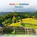 19-25.03 Sapte evenimente de neratat saptamana aceasta la Cluj