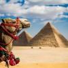 18.05 Eveniment pentru copii: Egipt – Călătorii pentru Minte, Trup si Suflet