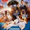 27.05 Film: Show Dogs
