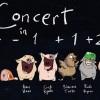 19.08 Spectacol: Concert 4-1+1+2