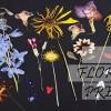 13.09 Atelier: Arta florilor presate