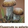 20.09 Atelier de desen in pastel: Ciupercute cu palarie