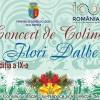 7.12 Concert de Colinde: Flori Dalbe