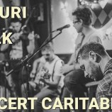 13.03 Concert caritabil: Picuri de Folk