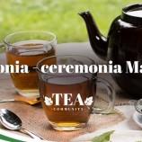 7.05 Degustare de ceai: Japonia – ceremonia Matcha