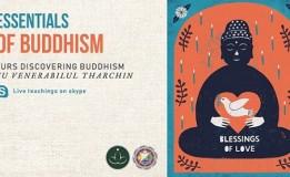 3.09 Curs: Essentials of Buddhism
