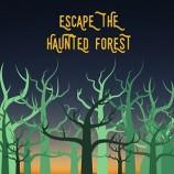 8.08 Joc de echipa: Escape The Haunted Forest – Summer Edition 2