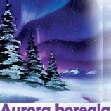 12.12 Atelier de pictura pentru copii: Aurora boreala