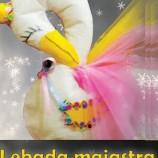 9.01 Atelier de art&craft pentru copii: Lebada maiastra