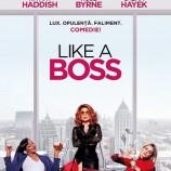 12.01 Film: Like a Boss