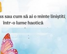 21.01 Prezentare: Mindfulness sau cum sa ai o minte linistita, intr-o lume haotica