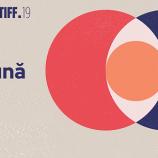 2.08 TIFF 2020: Expozitie: Artiști Împreună