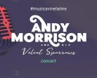 19.11 Concert: Andy Morrison and His Velvet Sparrows