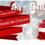 13.12 Eveniment caritabil: NUCA Christmas Fair