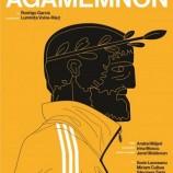 28.04 Piesa de teatru: Agamemnon