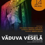 14.05 Vaduva Vesela la Opera Nationala