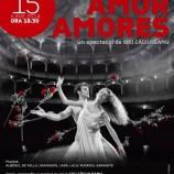 15.06 Amor Amores