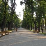 06.08  Lectură în parc