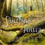 11.02 Piesa de teatru: Sânziana și Pepelea