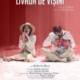 16.02 Piesa de teatru: Livada de Visini