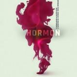 08.06 Piesa de teatru: Hormon