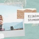 21.01 Seminar: Eliminarea Stresului