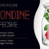 24.01 Spectacol de operă: La rondine