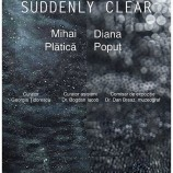 23.06-4.07 Expozitie: Suddenly Clear